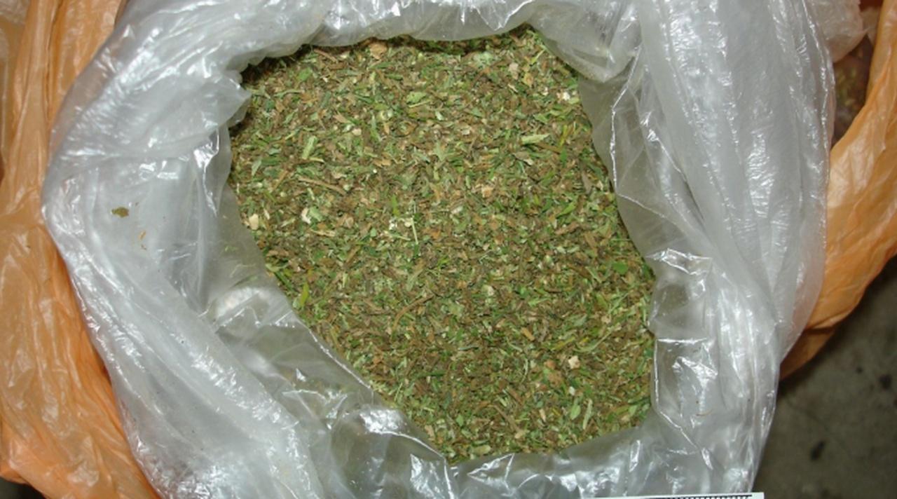 В москве с 1 кг марихуаны конопля в смоленской области